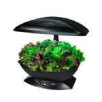 Aerogrow Kitchen Garden Appliance